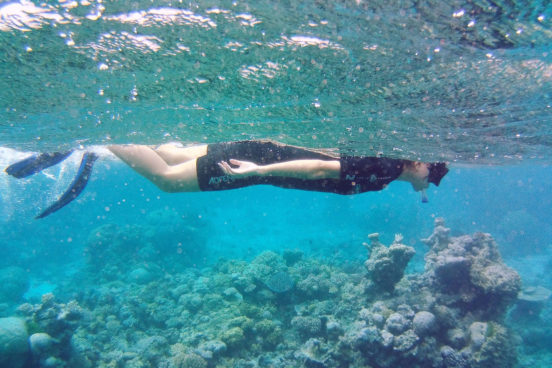 Great Barrier Reef snorkeling tour