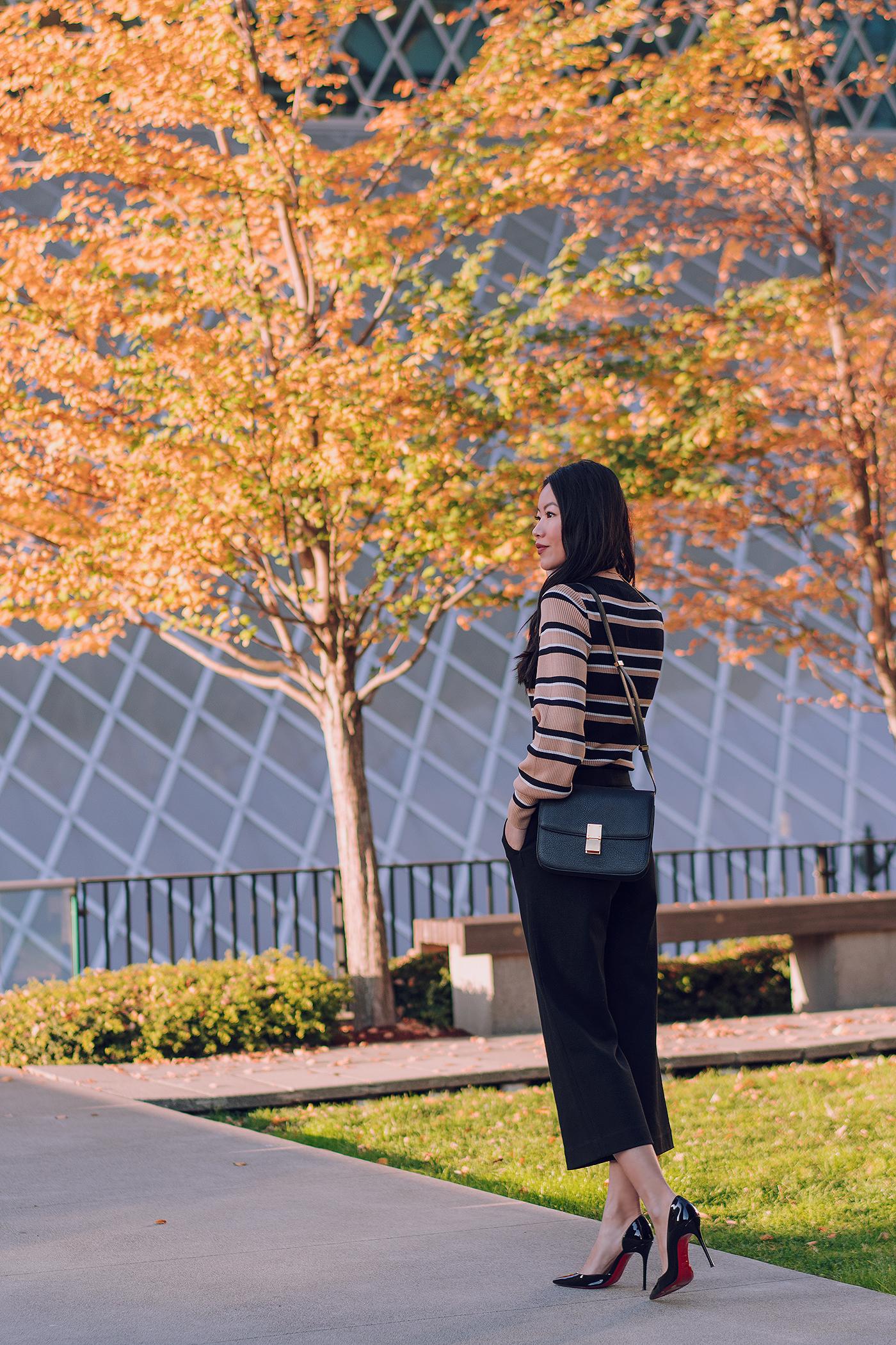 Celine medium black Box bag