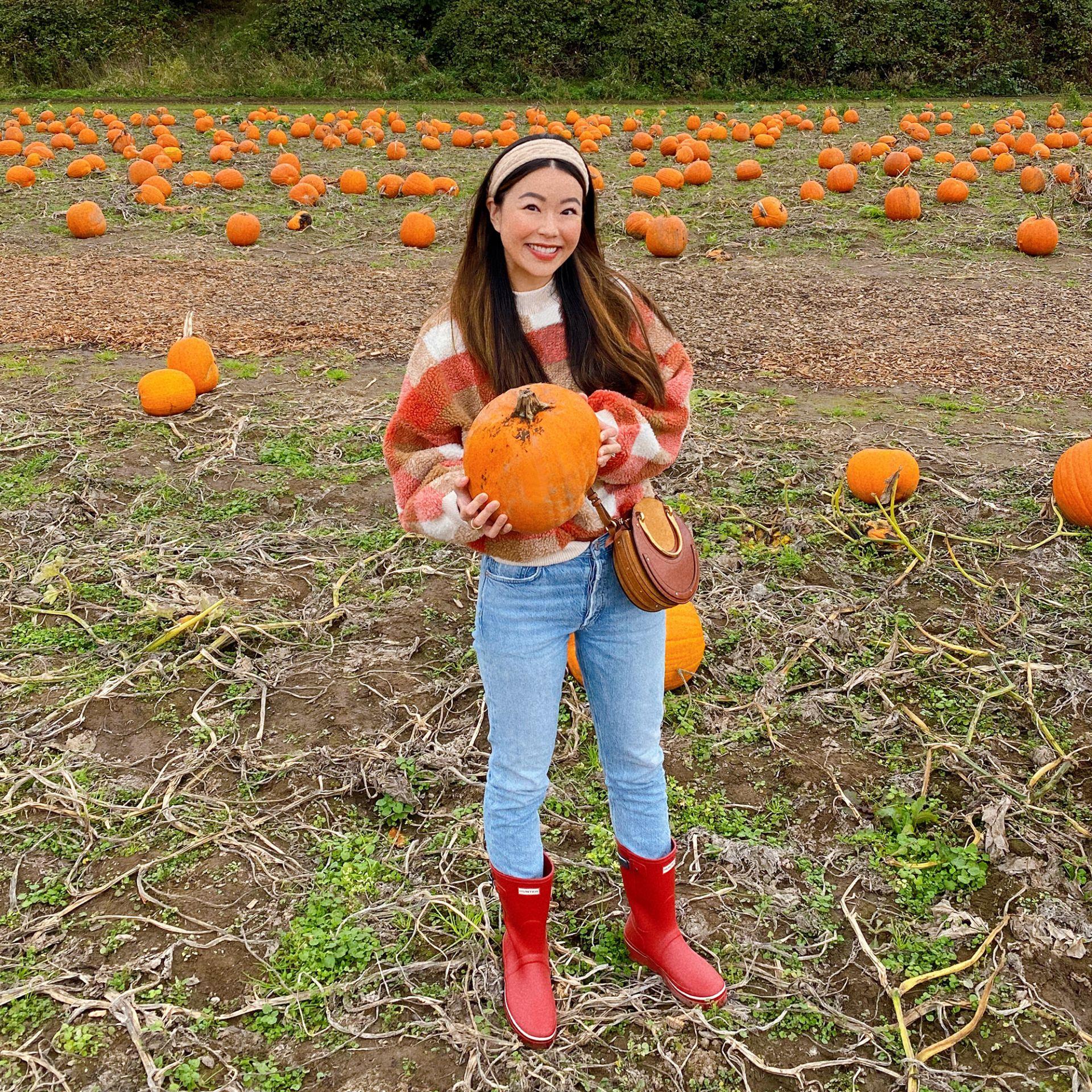 Seattle pumpkin patch