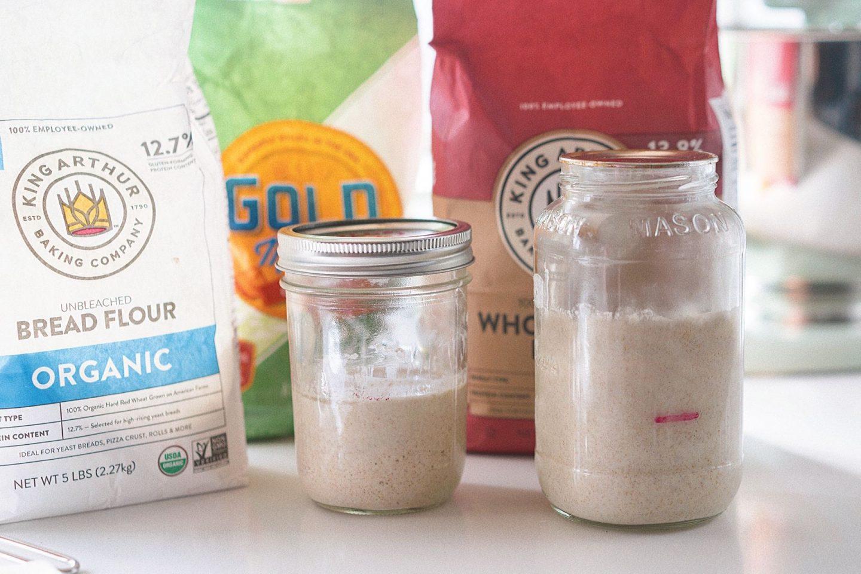 beginner sourdough starter recipe