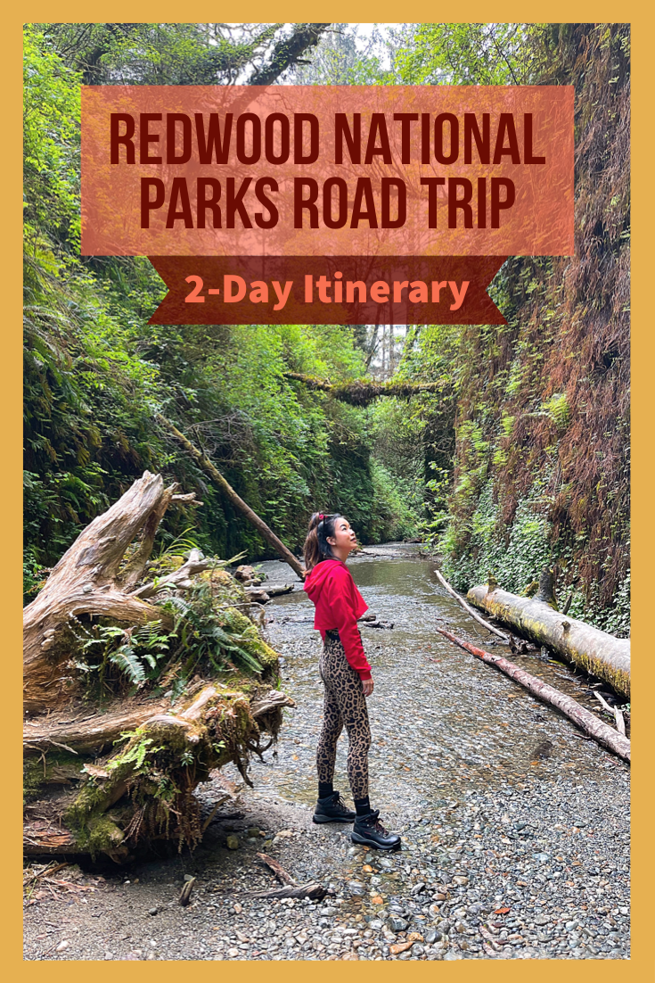 Redwood National and State Parks road trip itinerary