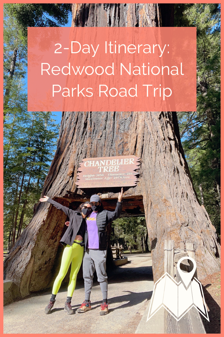 Redwood National Park road trip itinerary