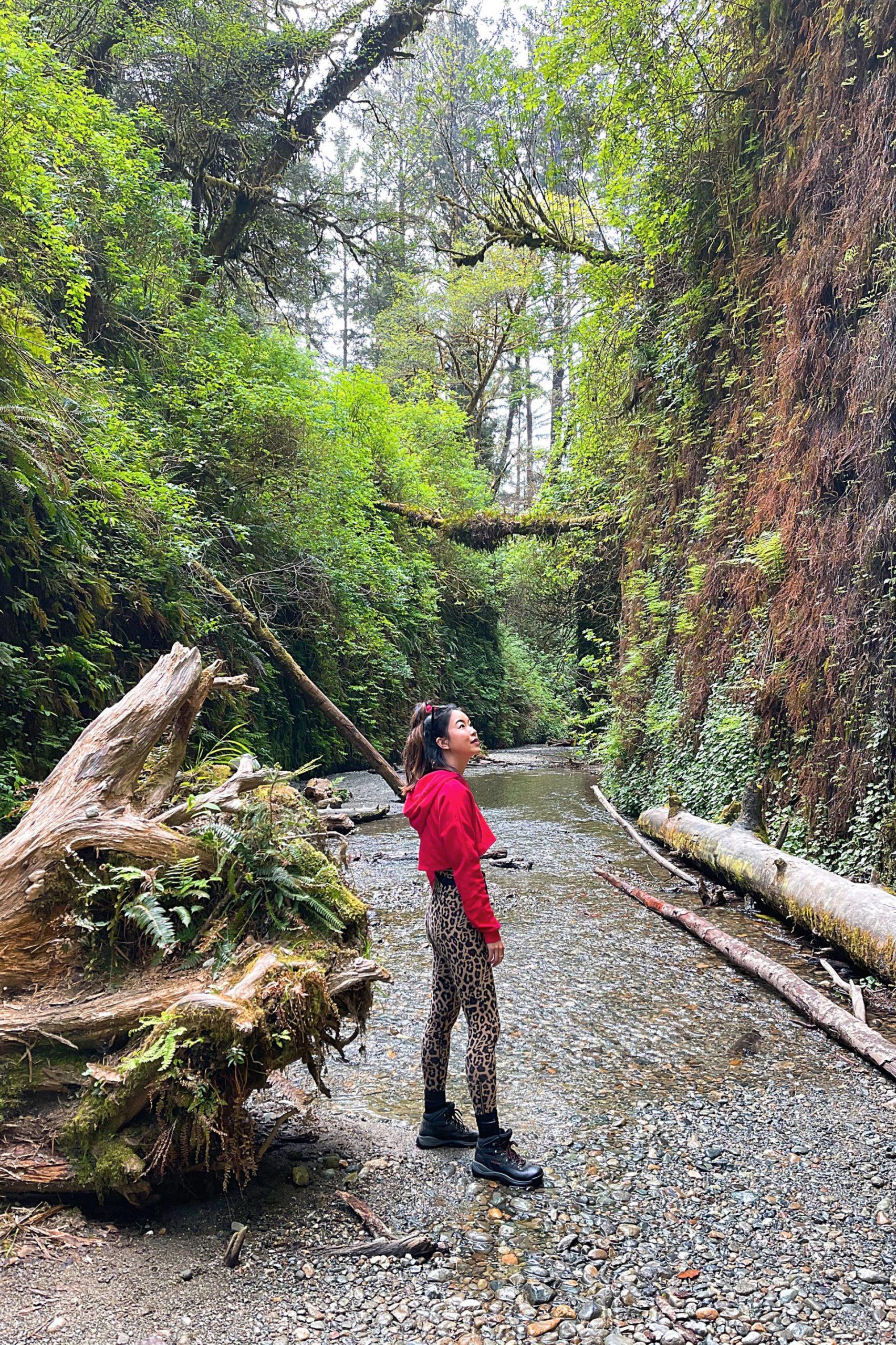 Fern Canyon hike itinerary
